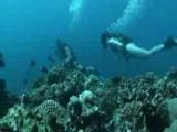 Underwater Sex 3